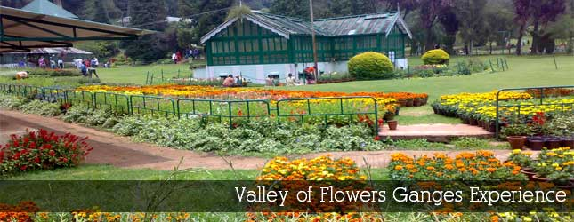 Valley of Flowers Ganges Experience